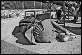The Orphaned Elderly of Kathmandu © Dan Giannopoulos